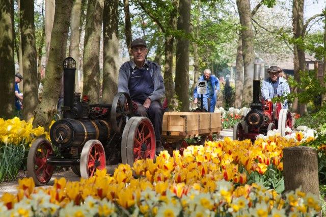 Traction-Engine-Run-in-Springfield-Gardens