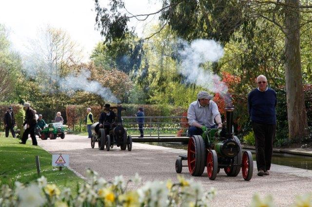 Traction-engine-run-through-the-gardens