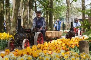 Springfield-MEH-Show-2015,-Traction-Engine-Run,-Springfield-Gardens